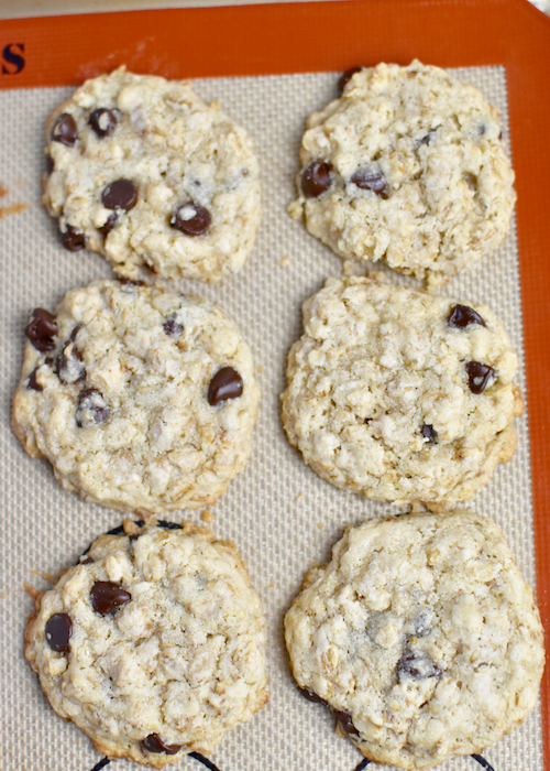 Gluten-free Oatmeal Chocolate Chip Cookies - Transfer and bake