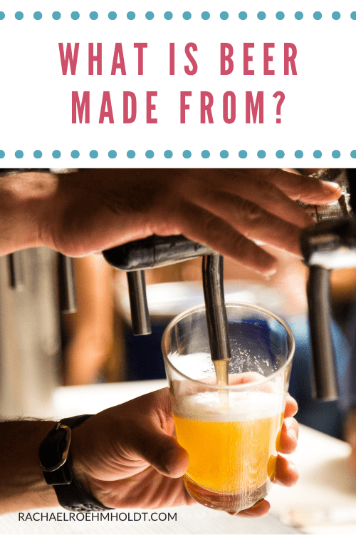 What is beer made from?