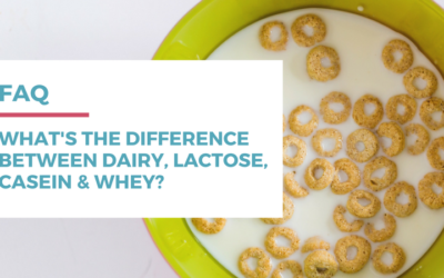 What's the difference between dairy, lactose, casein, and whey?