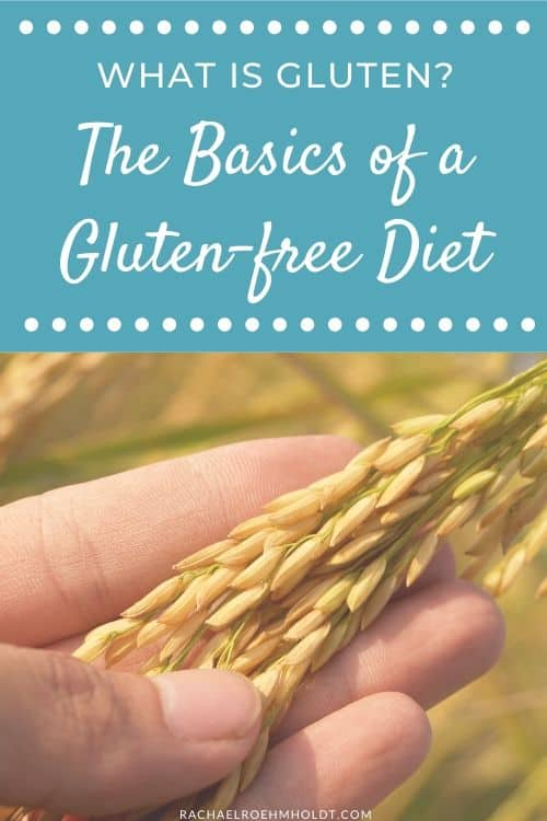 What is gluten? The Basics of a Gluten-free Diet